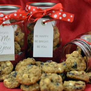 Mini White Chocolate and Craisin Christmas Cookies in a Jar 1   ShesGotFlavor